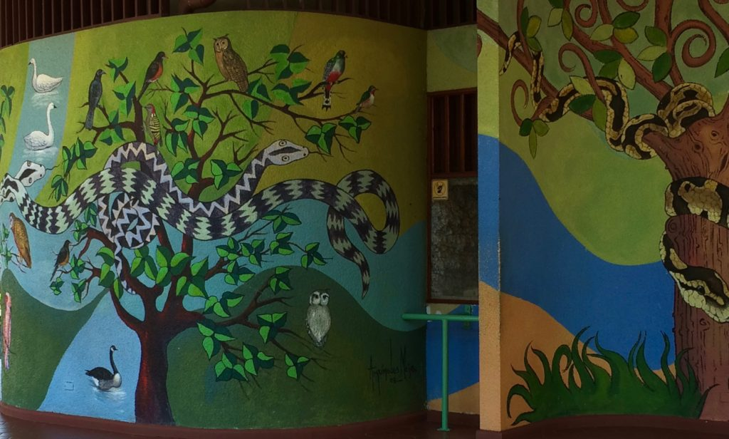 Mural for the reptile cages